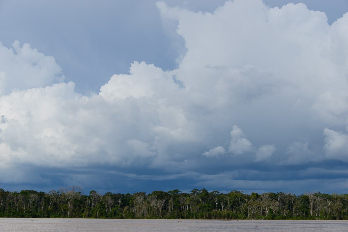 <h5>Rio Beni</h5><p>A paisagem ao longo do Beni não difere da da maioria dos rios amazónicos: uma parede verde compacta e contínua, com uma incrivel diversidade de espécies de árvores que a água vai acossando, até as arrancar pela raíz e levar em direcção a Norte, onde o curso de água se metamorfoseia em diferentes topónimos – primeiro Beni, depois Madre de Dios e ainda Marmoré e Madeira – até se incorporar no maior rio da Terra, o mítico Amazonas.</p>