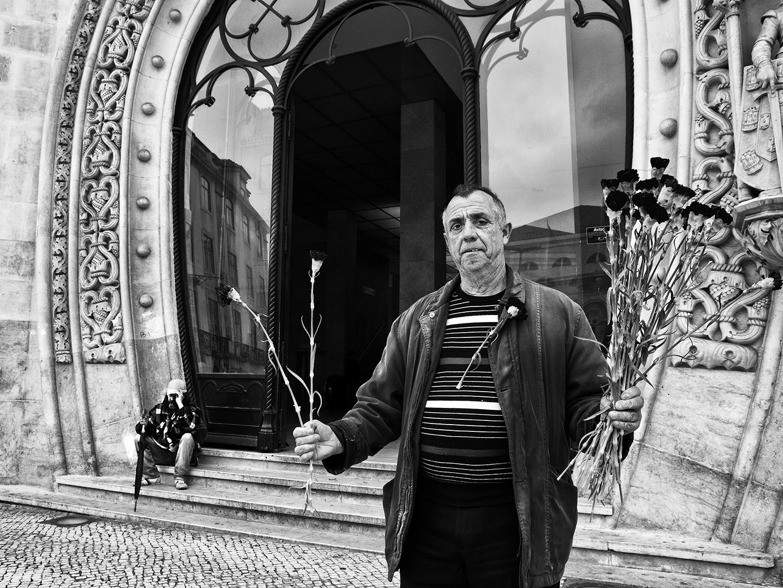 <h5>flores em crise | flowers in crisis, Lisboa 2012</h5>