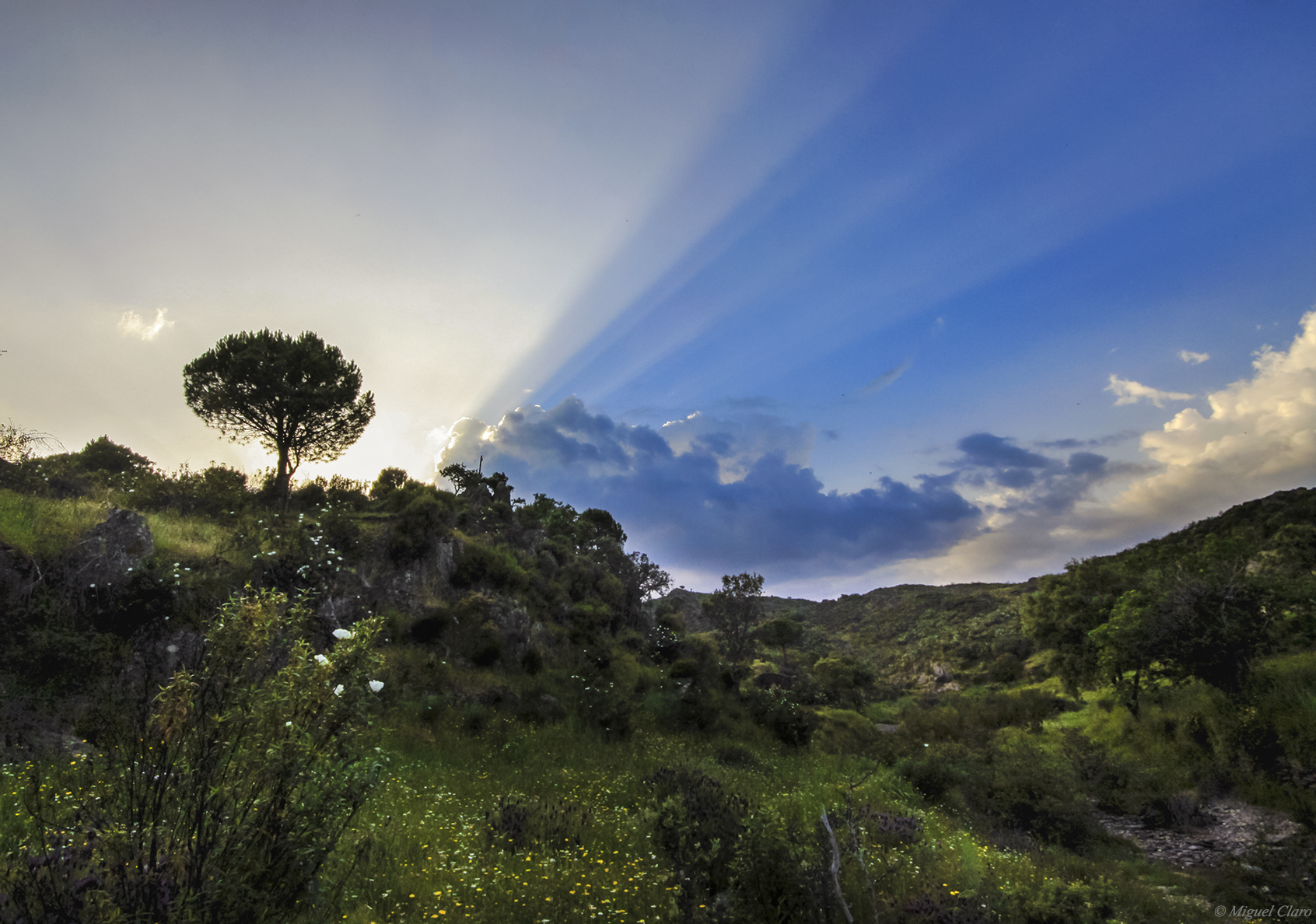 <h5>Crepuscular Rays in Tomina</h5>