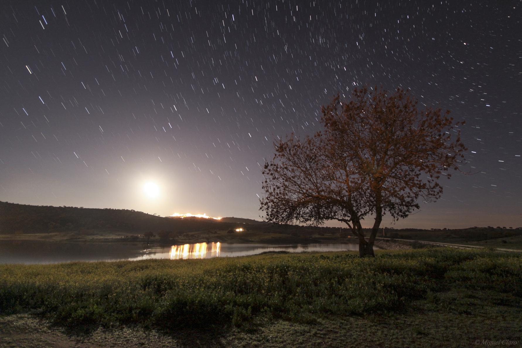 <h5>Alqueva´s Moon Landscape</h5>