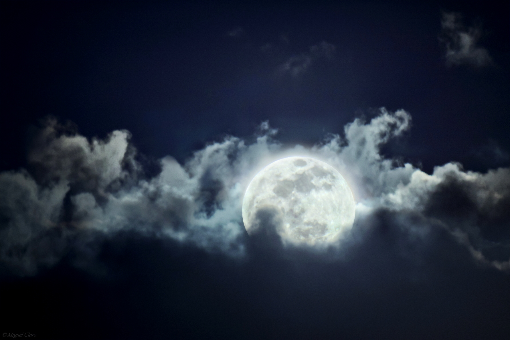 <h5>The Spring Moon</h5>