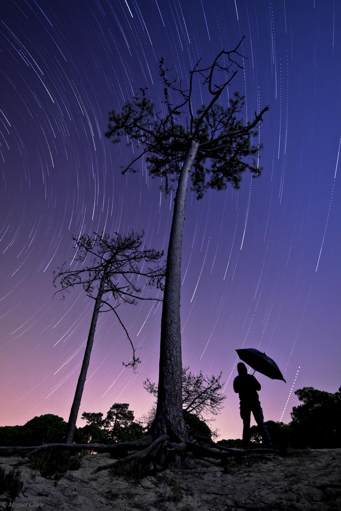 <h5>Raining Stars</h5>