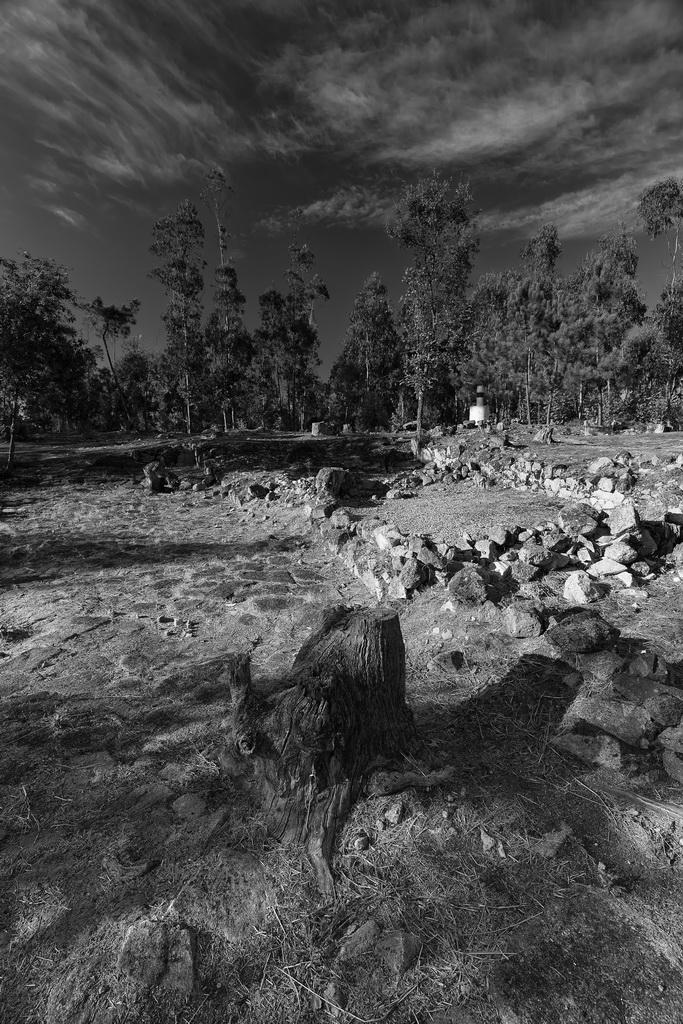 """<h5>2º Prémio: """"Pedras com História"""", Cividade de Bagunte</h5><p>Hélder Miguel da Rocha Coelho - """"Hemiroco""""</p>"""