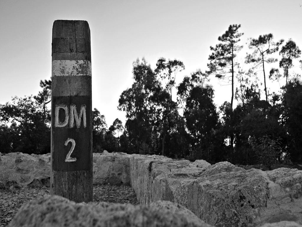 """<h5>Menção Honrosa: """"DM2"""", Cividade de Bagunte</h5><p>Rita Carmo Martins - """"José Silva""""</p>"""