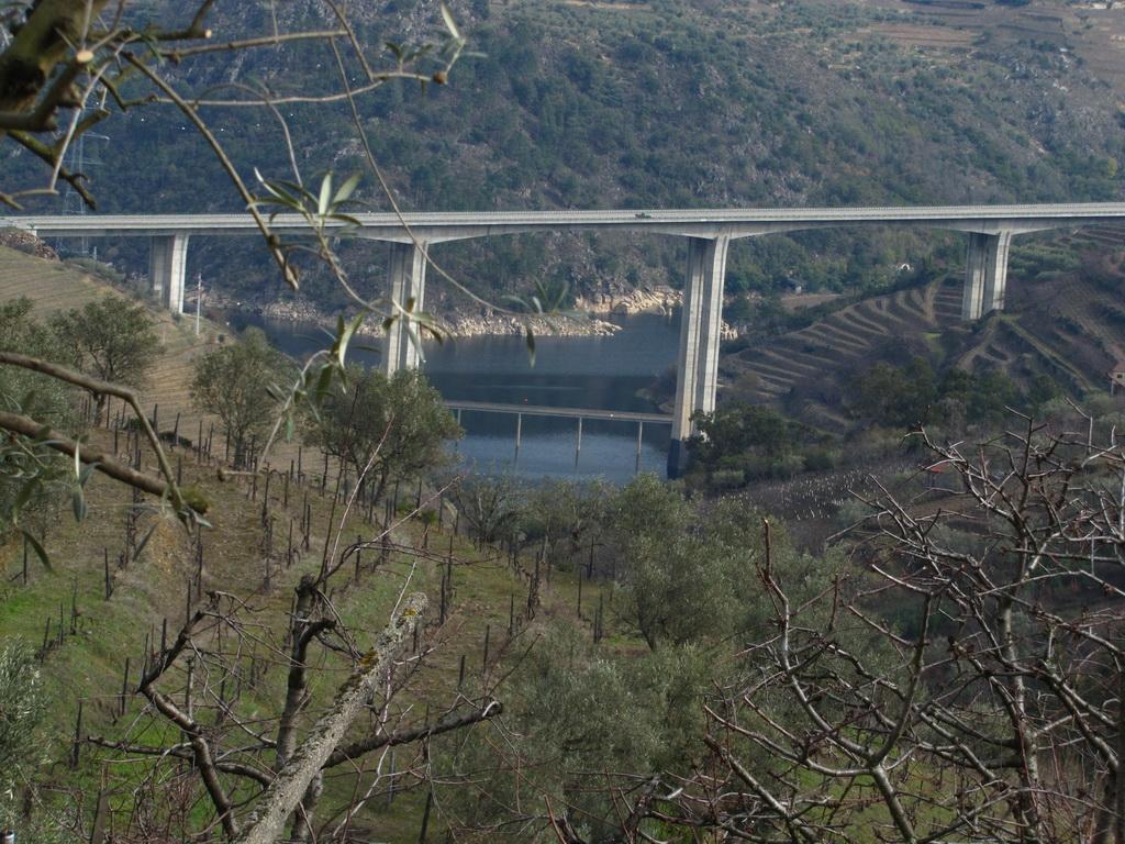 <h5>A ponte que liga</h5>