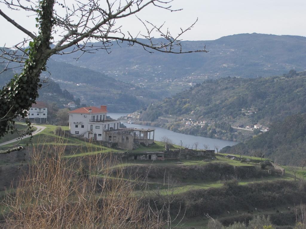 <h5>Douro - o singelo do lugar</h5>