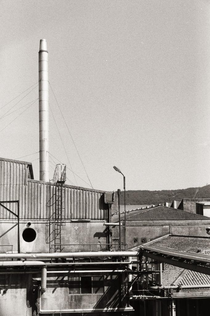 """<h5>2º Prémio – """"Coelima"""" de Sara Marina Alves Fernandes</h5><p>Prémio: 500,00€ + Conjunto de publicações, oferta do Centro Português de Fotografia - """" A Porta do Meio-Exposição Colonial de 1934""""; """" A Nova Moscovo""""; """"A Colecção do Imperador""""; """"À Superfície do Tempo""""</p>"""